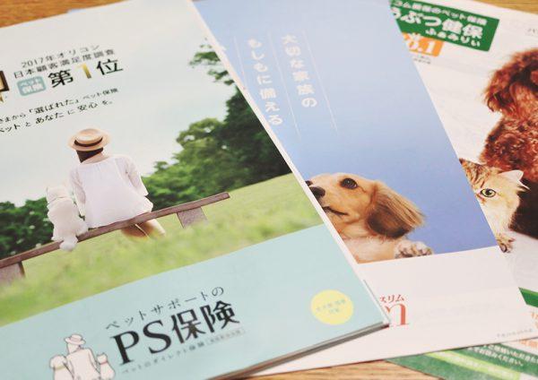 ペット保険のパンフレット取り寄せ