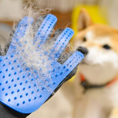 ブラシ手袋 グルーミング手袋