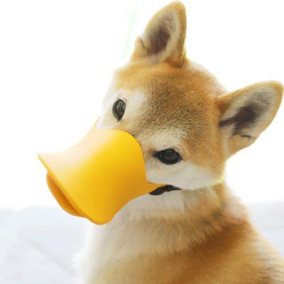オッポ (OPPO) クァック クローズド 犬の口輪 アヒルのくちばし型。