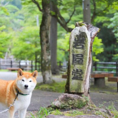 瀬戸市岩谷堂公園